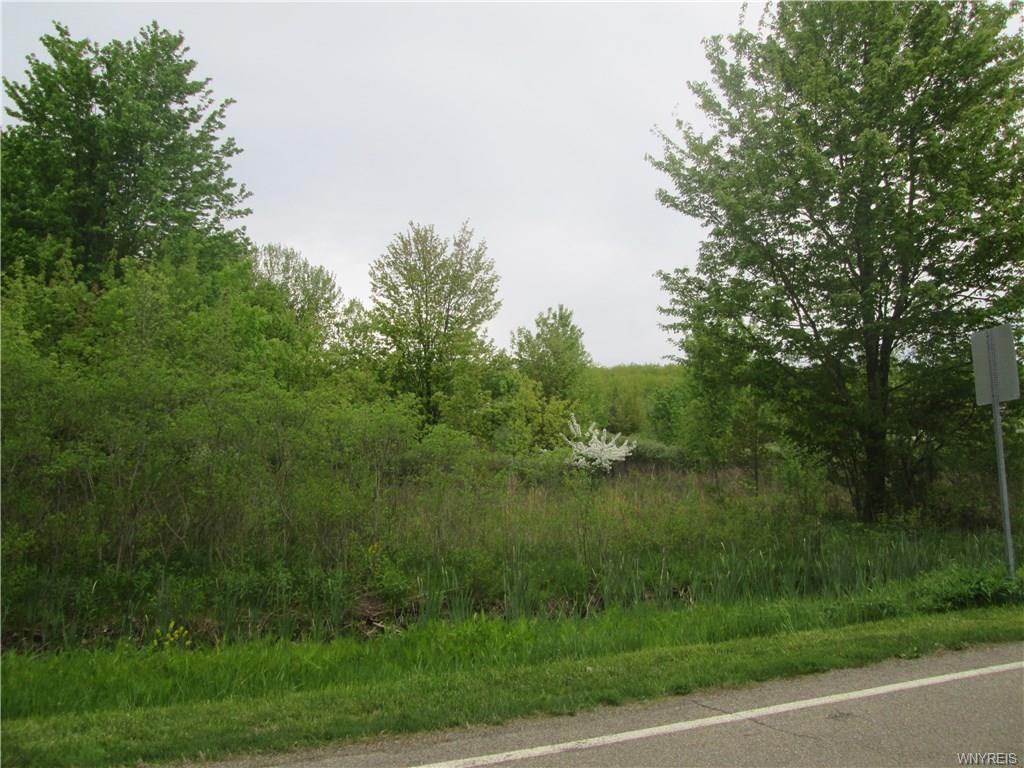 Photo of home for sale at VL Versailles Road, Evans NY