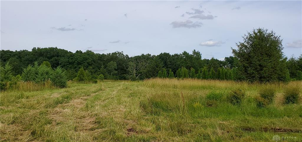 Photo of home for sale at Lot 2 Nixon Camp Road, Turtlecreek Twp OH