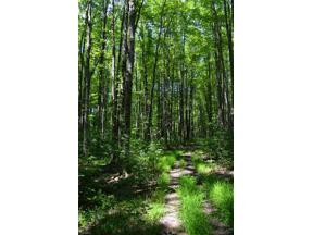 Property for sale at 13603 County Line Road, Russell,  Ohio 44022