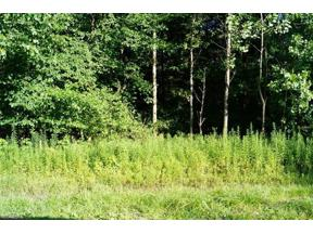 Property for sale at Laser Drive, Chesterland,  Ohio 44026