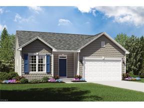 Property for sale at 3851 Heron Drive, Lorain,  Ohio 44053