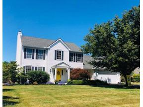 Property for sale at 518 Treeside Lane, Avon Lake,  Ohio 44012