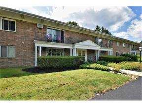Property for sale at 5011 Nob Hill Drive 14C, Chagrin Falls,  Ohio 44022