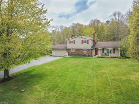 Property for sale at 13985 Meadowlark Lane, Newbury,  Ohio 44065