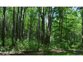 Property for sale at County Line Road, Russell,  Ohio 44022