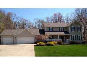 Property for sale at 10137 Nelson Court, Wadsworth,  Ohio 44281