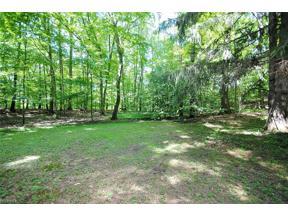Property for sale at V/L Pine River Road, Bentleyville,  Ohio 44022