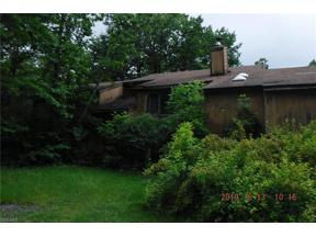 Property for sale at 17176 Wood Acre Trail, Chagrin Falls,  Ohio 44023