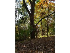 Property for sale at 2201 Reimer Road, Wadsworth,  Ohio 44281