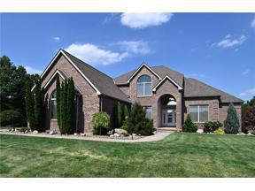 Property for sale at 41147 Mills Circle, Lagrange,  Ohio 44050
