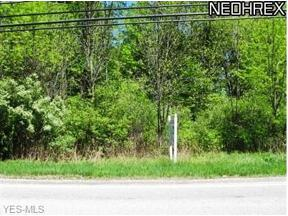 Property for sale at Schady Road, Olmsted Township,  Ohio 44138