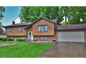 Property for sale at 9161 Gregory Court, Mentor,  Ohio 44060