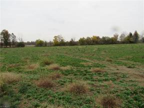 Property for sale at Diagonal Road, Lagrange,  Ohio 44050