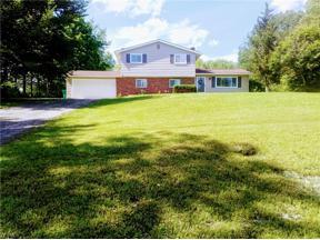 Property for sale at 11190 Pekin Road, Newbury,  Ohio 44065