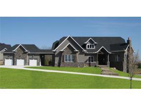 Property for sale at 1543 McHugh Lane, Wadsworth,  Ohio 44281