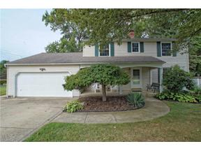 Property for sale at 7300 Chillicothe Road, Mentor,  Ohio 44060