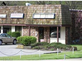 Property for sale at 14333 Kinsman Road 1, Burton,  Ohio 44021