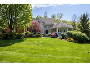 Property for sale at 17381 Coldwater Trail, Bainbridge,  Ohio 44023