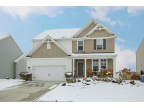 Property for sale at 11565 Reserve Way, Columbia Station,  Ohio 44028