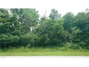 Property for sale at VL Palomino Trail 2, Kirtland,  Ohio 44094