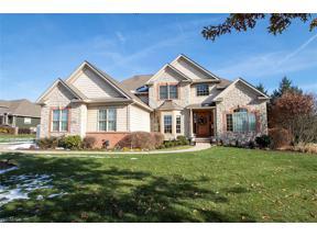 Property for sale at 3003 Sutton Lane, Medina,  Ohio 44256