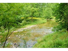 Property for sale at VL Riddle Road, Chagrin Falls,  Ohio 44022