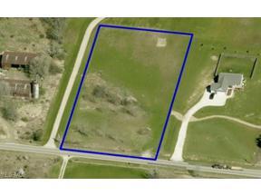 Property for sale at 6481 Chippewa Road, Medina,  Ohio 44256