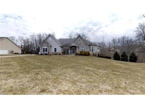 Property for sale at 4165 Maggie Marie Boulevard, Medina,  Ohio 44256