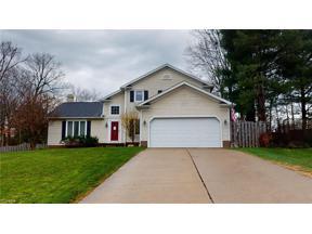 Property for sale at 10431 Oviatt Lane, Twinsburg,  Ohio 44087