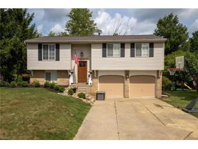 Property for sale at 10065 Patton Street, Twinsburg,  Ohio 44087