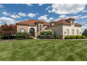 Property for sale at 9650 Nighthawk Drive, Chagrin Falls,  Ohio 44023
