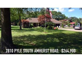 Property for sale at 7810 Pyle South Amherst Road, Amherst,  Ohio 44001