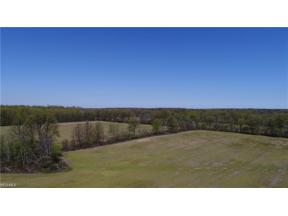 Property for sale at 10240 Island Road, Grafton,  Ohio 44044