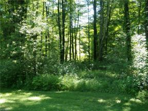 Property for sale at V/L Sperry Road, Chesterland,  Ohio 44026
