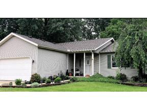 Property for sale at 290 Horseshoe Drive, Lagrange,  Ohio 44050