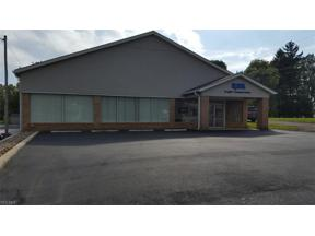 Property for sale at 487 College Street, Wadsworth,  Ohio 44281