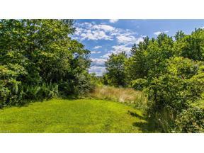 Property for sale at Wyoga Lake Road, Cuyahoga Falls,  Ohio 44224