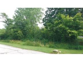 Property for sale at VL Palomino Trail, Kirtland,  Ohio 44094