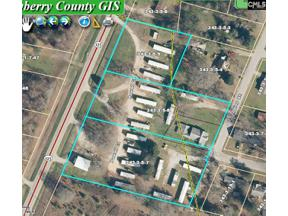 Property for sale at 8228 Sc 121 Highway, Newberry  29108