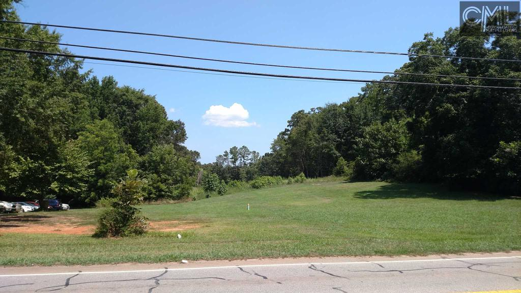 Photo of home for sale at 235 COLUMBIA Avenue, Chapin SC