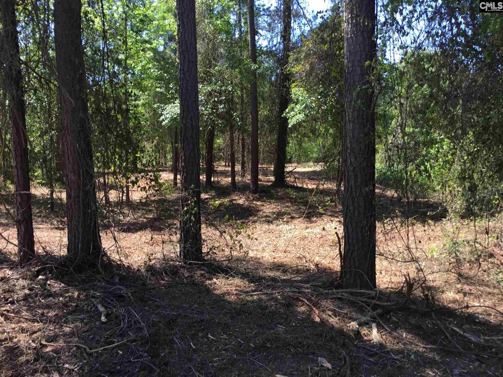 Photo of home for sale at 1237 Ridgeway Road, Lugoff SC