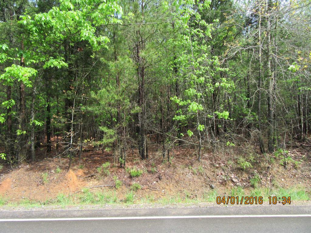 Photo of home for sale at 0 PEBBLE BRANCH Road, Chapin SC