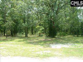 Property for sale at 851 Lake South Drive Unit: S, Lexington,  South Carolina 29072