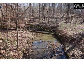Property for sale at 0 Mt. Hope Road, Ridgeway,  South Carolina 29130