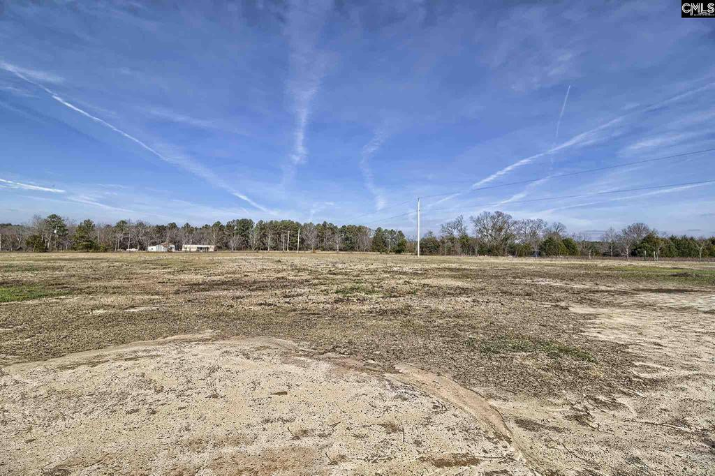 Photo of home for sale at 0 Tindal Road, Pelion SC