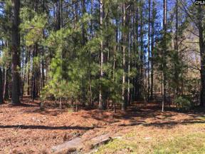 Property for sale at 0 Highway 378, Lexington,  South Carolina 29072