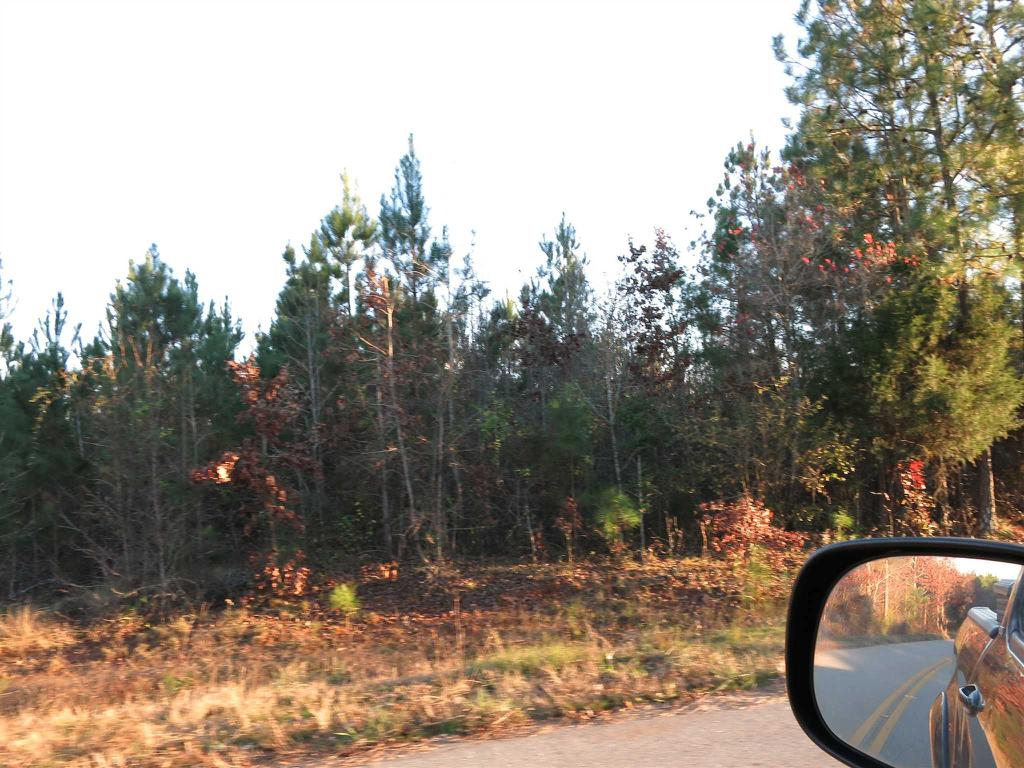 Photo of home for sale at LOT 5 COUNTRY POND Road, Chappells NC