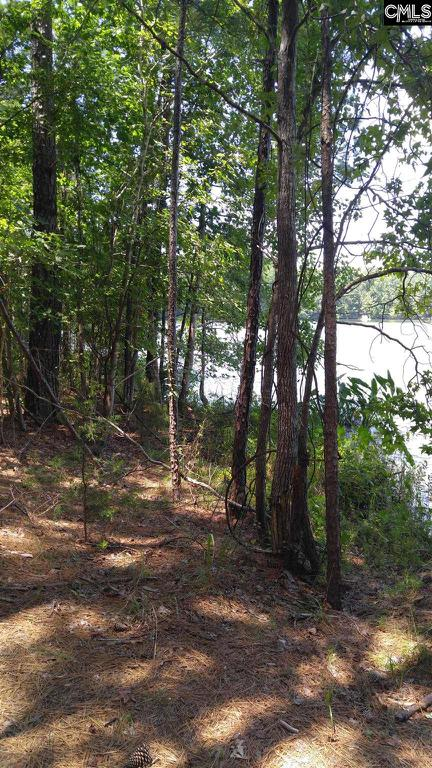 Photo of home for sale at 3990 Pearson Road, Blair SC