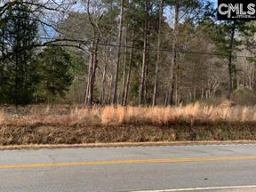 Property for sale at TBD Murray Lindler Road, Chapin  29036
