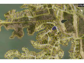 Property for sale at 401 Lookover Pointe Drive, Chapin,  South Carolina 29036
